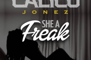 Calico Jonez – She A Freak