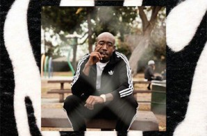 Freddie Gibbs Presents: Piñata (Review)
