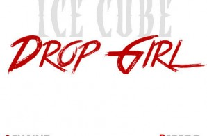 Ice Cube x 2 Chainz x Redfoo – Drop Girl