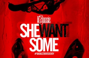 Lil Boosie – She Want Some