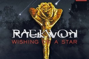 Raekwon – Wishing On A Star
