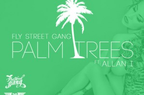 Fly Street Gang x Allan I – Palm Trees (Prod. by Dreemteam)