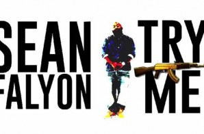 Sean Falyon x Dej Loaf – Try Me (BeEVERYWHERE MIX) (Video)