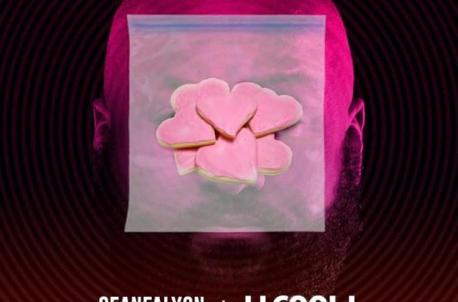 Sean Falyon x LL Cool J – Pink Cookies (BeEverywhere Mix)