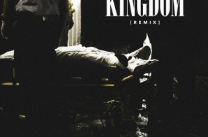 Dessy Hinds – Kingdom (Remix)