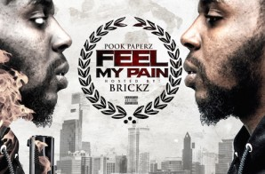 Pook Paperz – Feel My Pain (Mixtape)