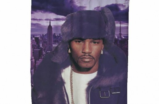 Dipset Now Offers A New Shower Curtain And Pillow Line!