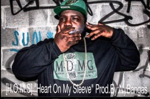 Young Thrillz – Heart On My Sleeve