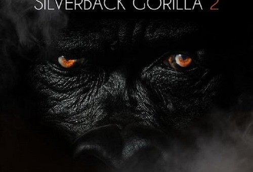 Sheek Louch – Gorilla Enemy