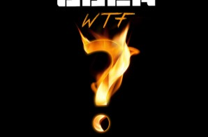 Young Buck – WTF