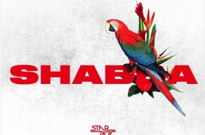 WIZKID – Shabba Ft. Chris Brown, Trey Songz & French Montana