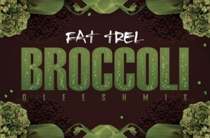 Fat Trel – Broccoli (Remix)